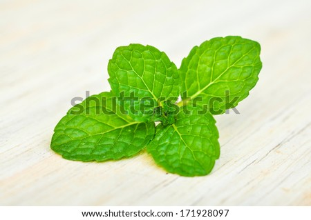 Mint leaves on a wooden table - stock photo