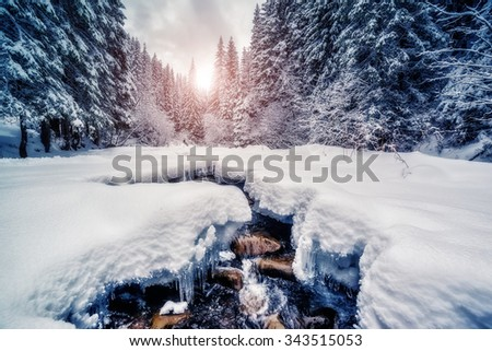 Miracle river at sunlight in the morning. Dramatic and picturesque wintry scene. Location Carpathian, Ukraine, Europe. Beauty world. Instagram toning effect. Glowing filter. Happy New Year! - stock photo