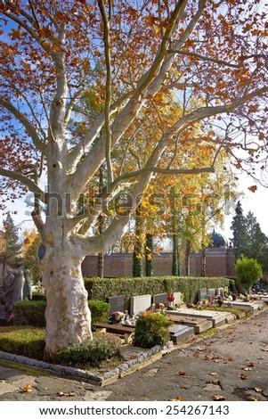 Mirogoj cemetary of Zagreb scene with unnamed graves, Croatia - stock photo