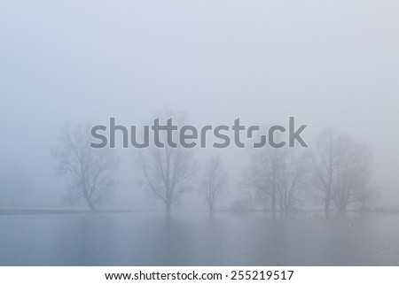 Mist - Fog - Brouillard - Nebel - Niebla - stock photo