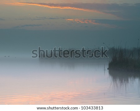 mist over a dutch lake during sunrise - stock photo