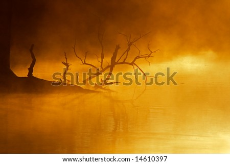 Mist over water, early morning, Kruger National Park, South Africa - stock photo
