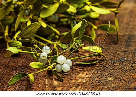 mistletoe branch on a wooden background - stock photo