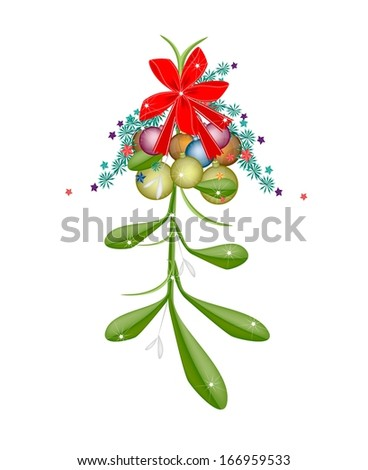 Mistletoe Bunch and Christmas Balls or Christmas Ornaments with A Christmas Red Ribbon For Christmas Celebration, Isolated on White Background  - stock photo