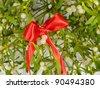 Mistletoe cutting - stock photo
