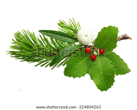 Mistletoe twig, holly berry and fir tree branch christmas decoration over white background.h - stock photo