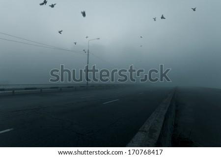 Misty cityscape. Empty city road. - stock photo