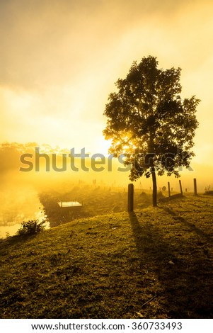 Misty dawn at the lake in morning - stock photo