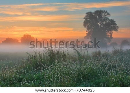 Misty dawn autumn morning - stock photo