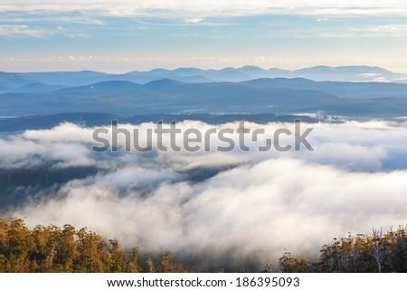 Misty dawn in Hartz Mountains National Park, Tasmania, Australia - stock photo