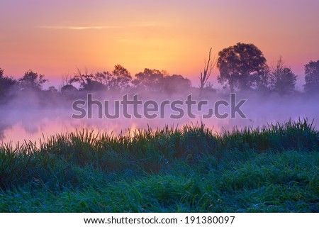 Misty dawn over  The Narew River, Poland. Nature reserve. Foggy morning landscape just before sunrise. - stock photo