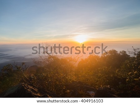Misty dawn over the Valley and the forest - stock photo