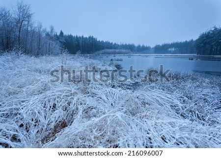 misty  frosty morning on lake in winter - stock photo
