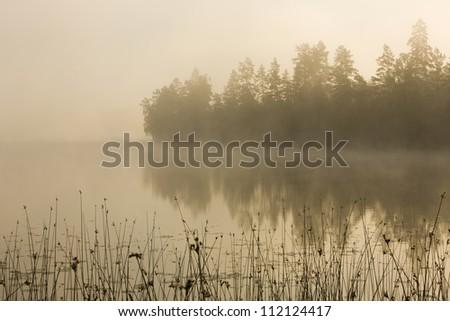 Misty lake in morning - stock photo