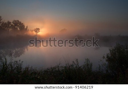 Misty lake on a summer morning - stock photo