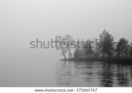 Misty landscape with trees B&W - stock photo