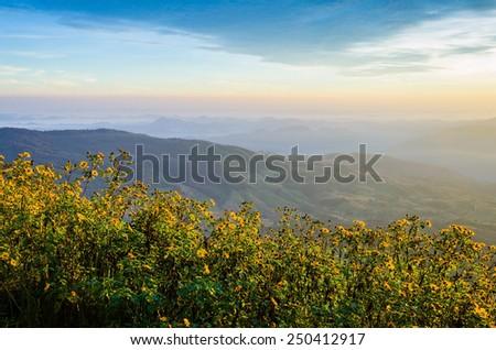 misty morning sunrise in mountain at Khao Kho Phetchabun, Thailand - stock photo
