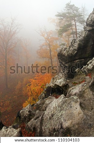 Misty rocks and trees in forest - stock photo