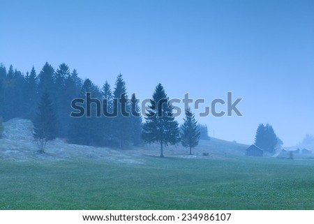 misty snowy morning on alpine meadows, Germany - stock photo