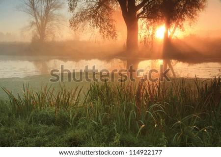Misty sunrise on the river - stock photo