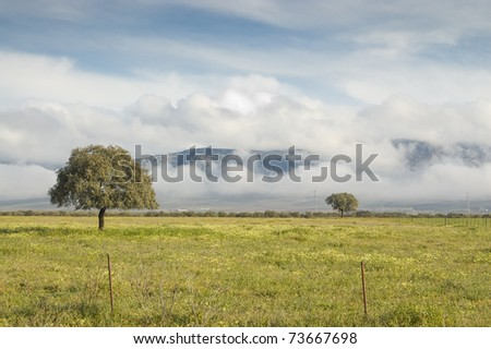 Misty valley in Ciudad Real province (Spain) - stock photo