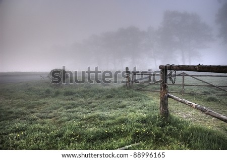 Misty view of the field - stock photo