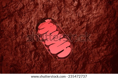 mitochondrion - stock photo