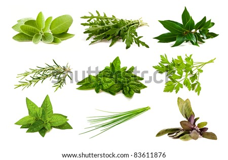 Mix aromatic herbs isolated on white - stock photo