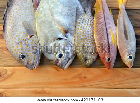 mix fresh fishes from fishery market on wooden plate in sunlight time - stock photo