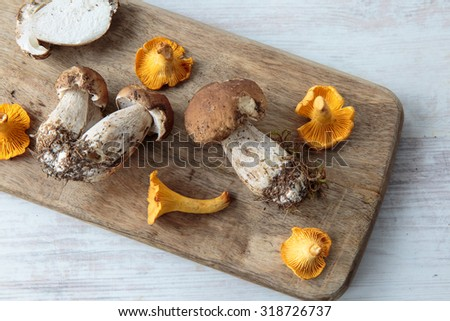 Mix of edible mushrooms on a chopping board - stock photo