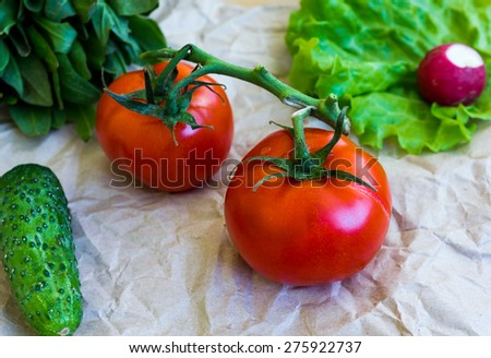 Mix of juicy vegetables: tomatoes, cucumber, radishes, lettuce. - stock photo