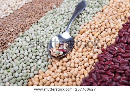 mix of raw legumes on silver spoon, with white beans, lentils, green beans, chick beans, kidney beans,  - stock photo