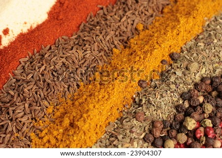 Mix of Spices in line on glass plate - stock photo