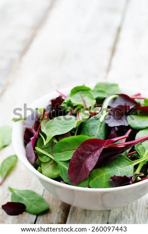 mix salad Romaine, arugula, spinach, mizuna, chard, oak salad on a white wood background. tinting. selective focus - stock photo
