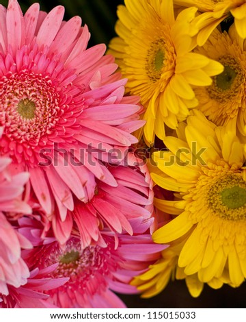 Mixed Bouquet - stock photo
