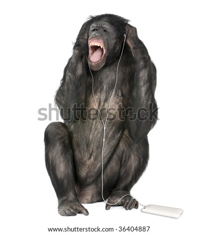 Mixed breed between Chimpanzee and Bonobo listening to music, 20 years old, in front of white background, studio shot - stock photo