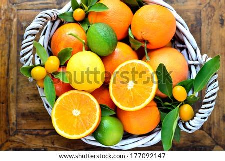 Mixed citrus, oranges, lemon, kumquats, lime, mandarin,grapefruit. Fresh citrus fruits. - stock photo