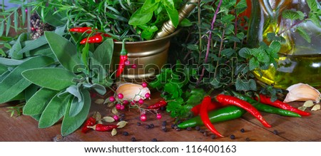 Mixed herbs of sage, rosemary, basil with red hot pepper in mortar with pestle on white background - stock photo