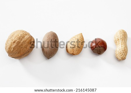 Mixed nuts in raw on white background - stock photo