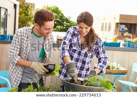 Mixed Race Couple Planting Rooftop Garden Together - stock photo