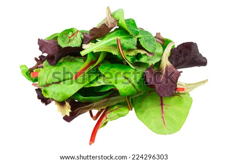 Mixed salad baby red leaf, baby spinach & red chard. isolated on white - stock photo