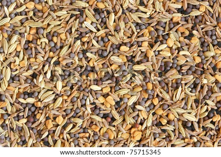 Mixture of exotic spices, for backgrounds or textures - stock photo