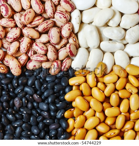 Mixture of four different type of colors of beans - stock photo