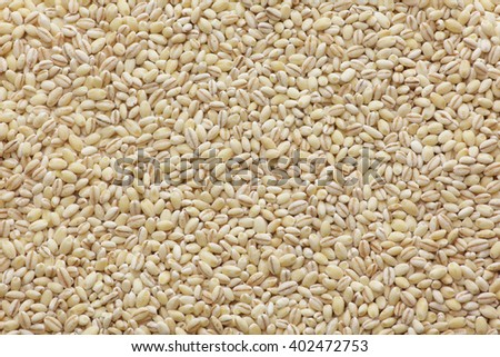 Mochimugi, naked barley - stock photo