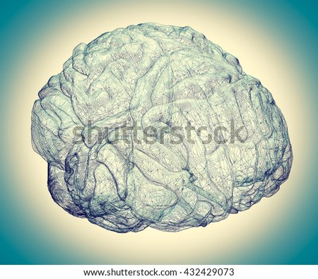 model brain in  projections , body structure, wire model. 3D illustration - stock photo