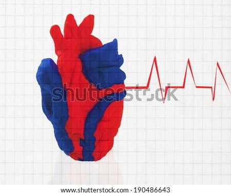 model of a human heart/Human Heart/EKG and a model heart - stock photo