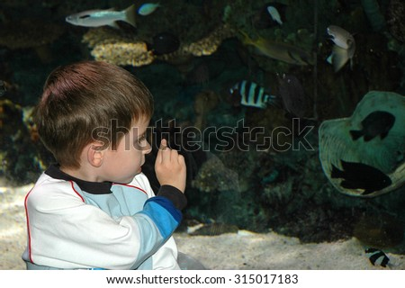 Model released image of Young caucasian preschool age boy looking at fish through a large glass window pointing - stock photo