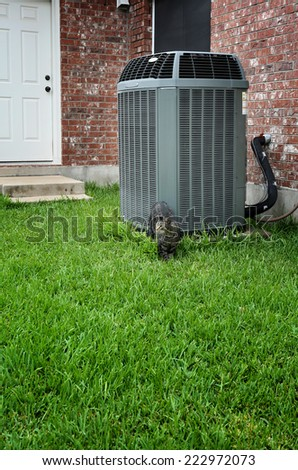 Modern air conditioner with cat walking in front on it - stock photo
