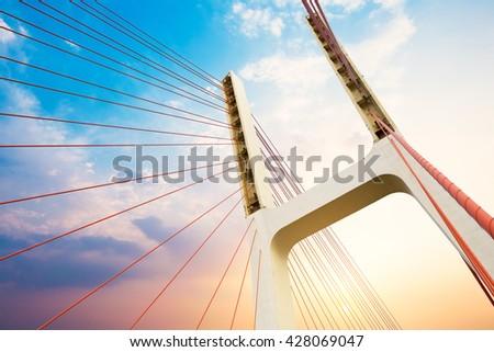 Modern bridge cables, twilight landscape. - stock photo