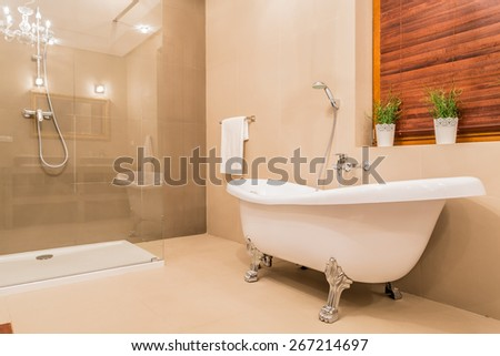 Modern design of new bathroom with glass shower and porcelain bathtub - stock photo